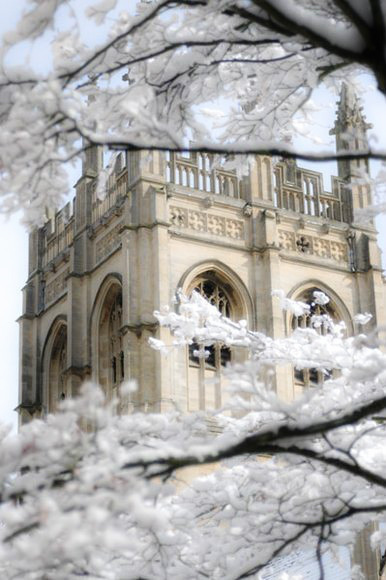 prepologist:  Oxford   (It's pretty, but it's treacherous!_