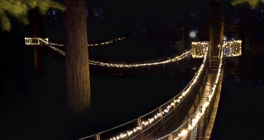 viatortravel:  Capilano Suspension Bridge lit up for the holidays in Vancouver (via 25 Places to Spend Christmas Around the World | Viator Travel Blog)