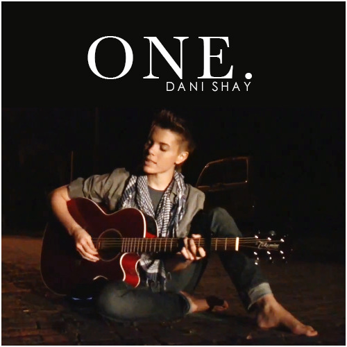 Dani Shay | One Requested Alternative Cover Request by queenofsquee