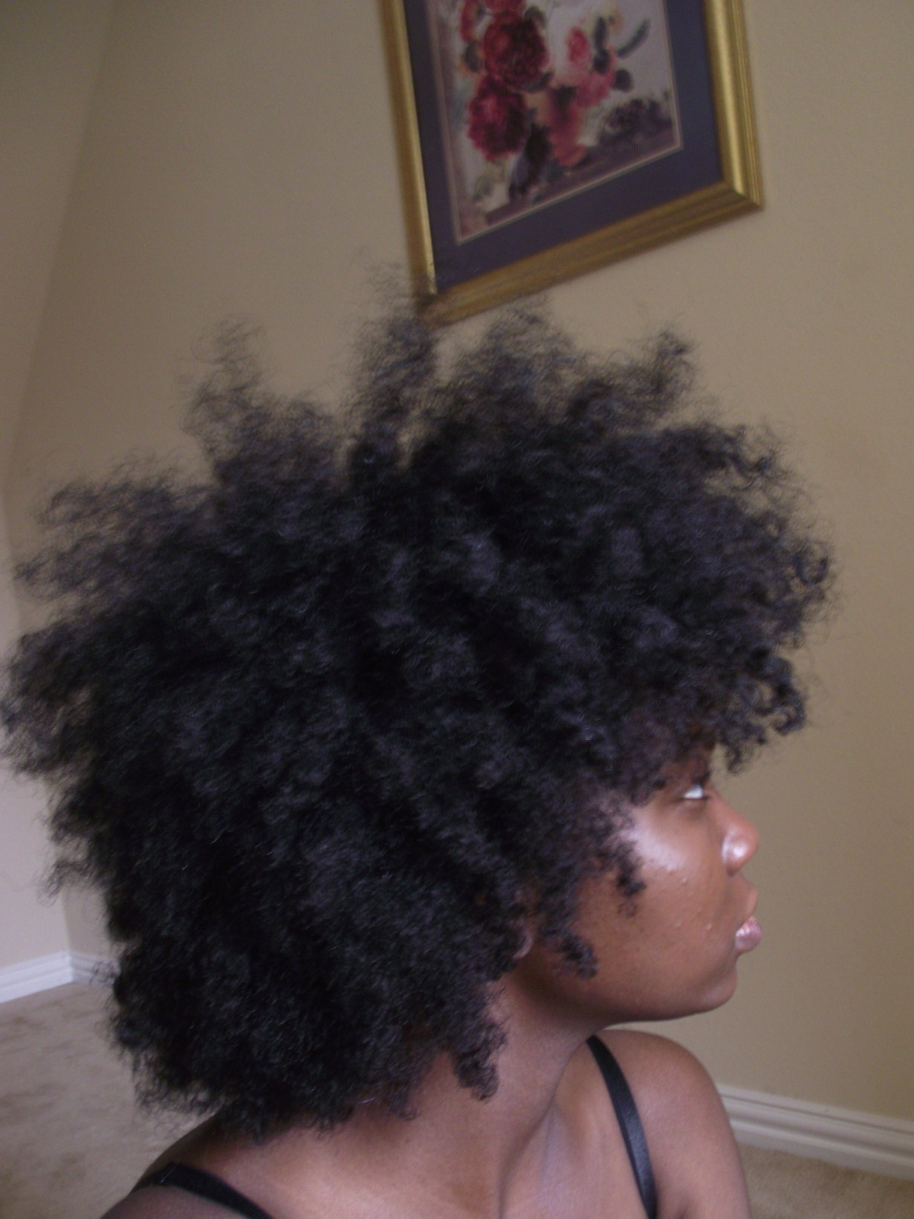 myblack-is-beautiful:  http://egyptique.tumblr.com/  my hair without weave and combed out   This Looks Like My Hair