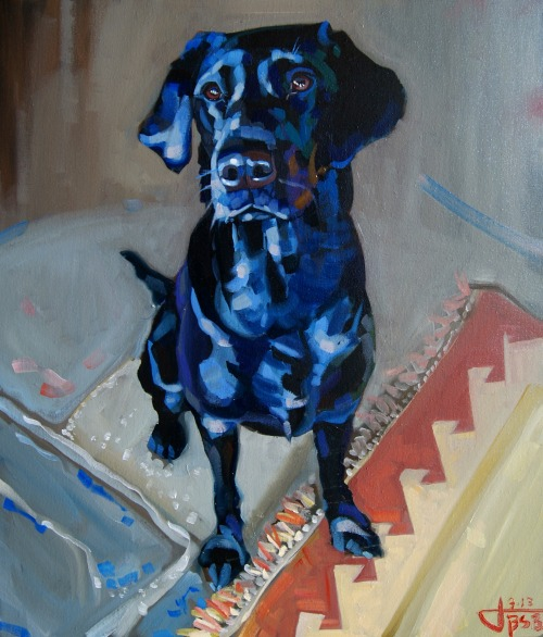 jackbsbanister:  this is my recently finished painting of Molly the lab. Its done using oil on canvas.  Feedback much appreciated! if you fancy looking at my other work go to http://www.facebook.com/jackbanister.art. Thanks.  Black Dog