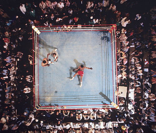 siphotos:  SI photographer Neil Leifer captures this aerial view of George Foreman on the canvas after being knocked out by Muhammad Ali at the Rumble in the Jungle. Ali turns 71 today. (Neil Leifer/SI) GALLERY: The Best of Muhammad Ali