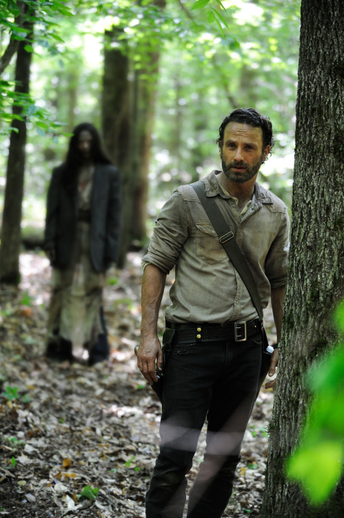 thesquawkingdead:  This is the first official image of THE WALKING DEAD season 4!!!!  hahahahaha \o/\o/\o/\o/ Para Nossa Alegriia