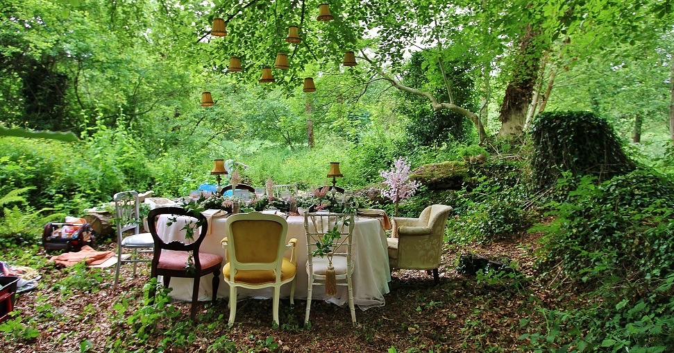 myirishhome:  Came across a Woodland Tea Party today while out for a walk.