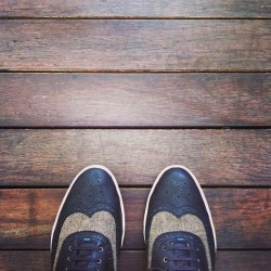 Wingtips on the hardwood floor #kicks  #whereistand #zara (at 22 Dempsey)