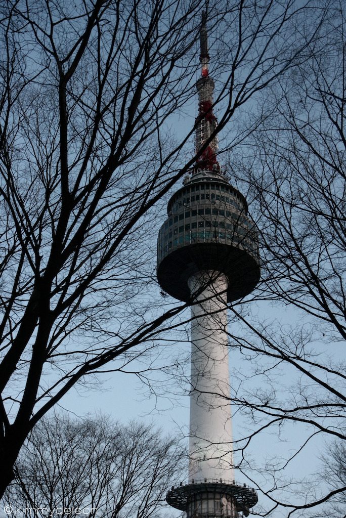 N Seoul Tower | Seoul, South Korea The beautiful tower is covered by the winter trees.