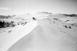 kevin-vanier:  Inappropriate sand dune somewhere West of Ulaanbaatar. A single mound in the middle of the grassy steppe.