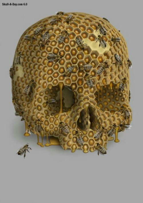 psychokami:  Skull beehive on We Heart It - http://weheartit.com/entry/60970319/via/psychokami   Hearted from: http://pinterest.com/pin/239887117624236064/