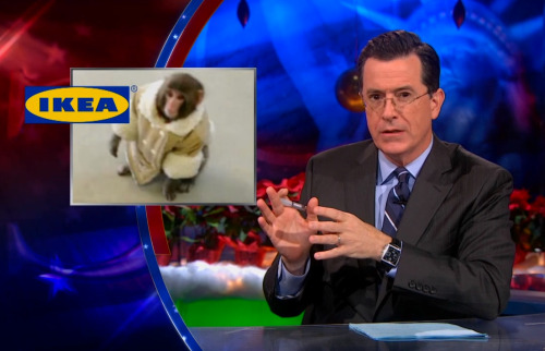 "Click the image to watch Ikea Monkey get The Colbert Bump and Stephen perform ""Good King Wenceslas"" with Michael Stipe and Mandy Patinkin on last night's Colbert Report. And don't miss the final night of Christmas Carol Week tonight at 11:30/10:30c when Stephen will sing ""Happy Xmas (War Is Over)"" with Sean Lennon, Mavis Staples and Jeff Tweedy."