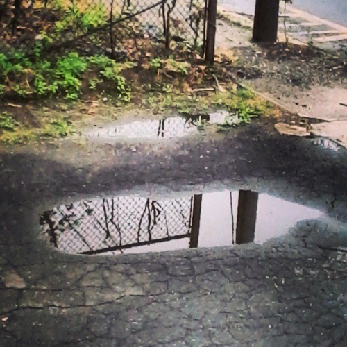 My favourite puddle. Good for reflecting. No pun intended.
