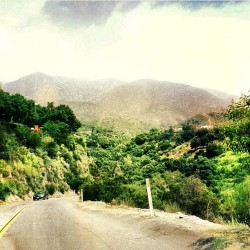 ridin through my old hood #Dena | Altadena, CA | #TheMeadows