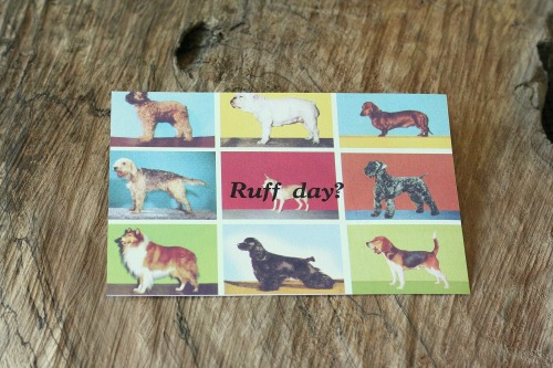 simplepursuits:  Ruff day? buy at goodsmiths  New print by inkandearnest available on goodsmiths