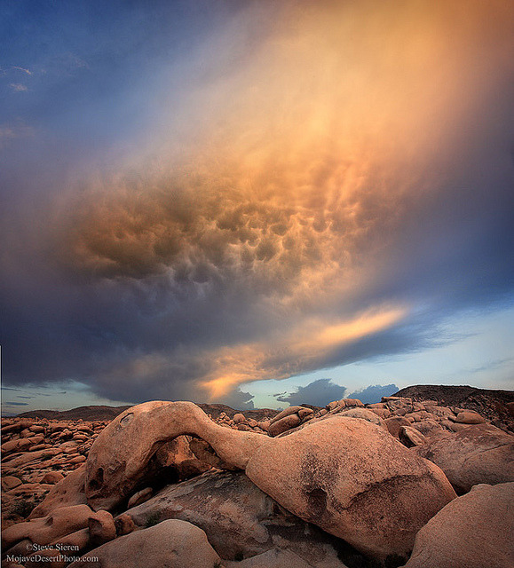 myprettyuniverse:  Joshua Tree Arch & Wild Sky by Steve Sieren Photography on Flickr.