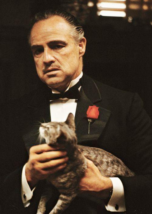 Marlon Brando by Steve Schapiro, The Godfather Family Album