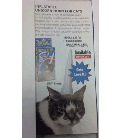 You Know You Want it For Your Adorable Little Baby Cat: Inflatable Unicorn Horn!