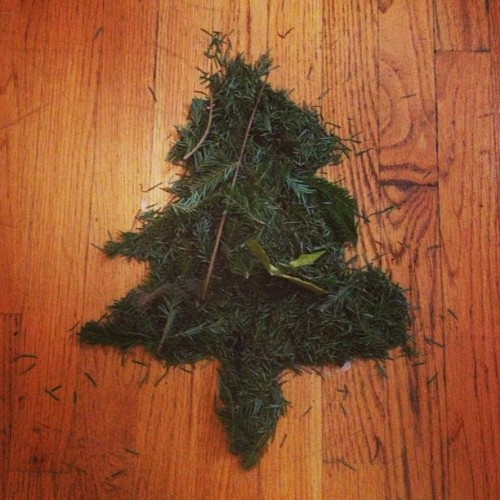 All that remains of our dearly departed Xmas tree.  (at Clydesdale)