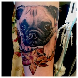 Meet Entei 🐶 Thanks so much Rish!! @brightvioletlights  (at Inktricate)
