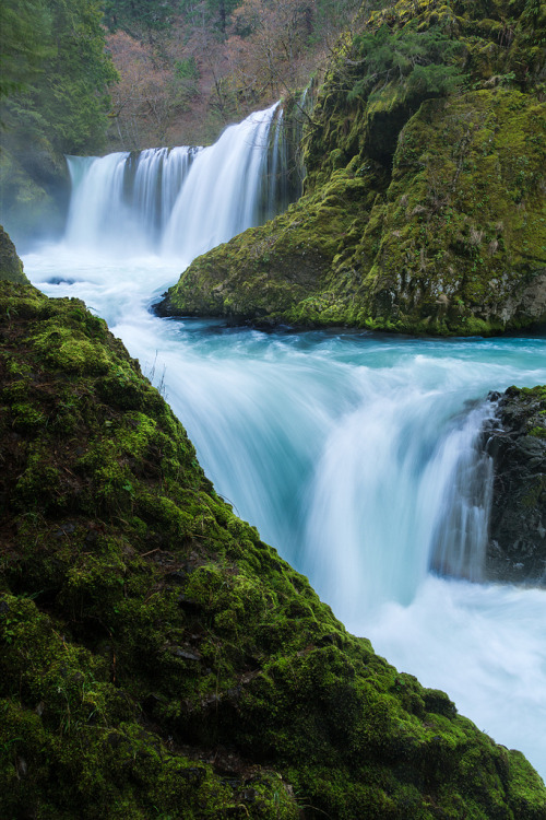 senerii:  Spirit Falls, Columbia River Gorge by Micahhead on Flickr.