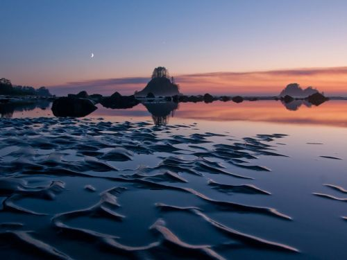 ecocides:  Cape Alava, Washington | image by Max Wilbert