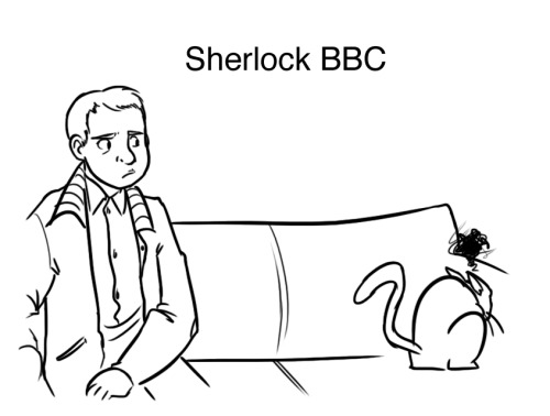 rizplease:  lifeandotheroddtales:  Different Sherlock portrayals as cats. Because I can. House is the uncontrollable crazy cat. Robert Downey Jr. cat is the flaunting type. BBC Sherlock is the brooding cat. Elementary Sherlock is the cuddly one. Canon Sherlock is an awesome YouTube keyboard cat that Watson is always impressed by.  Oh my god the Canon one