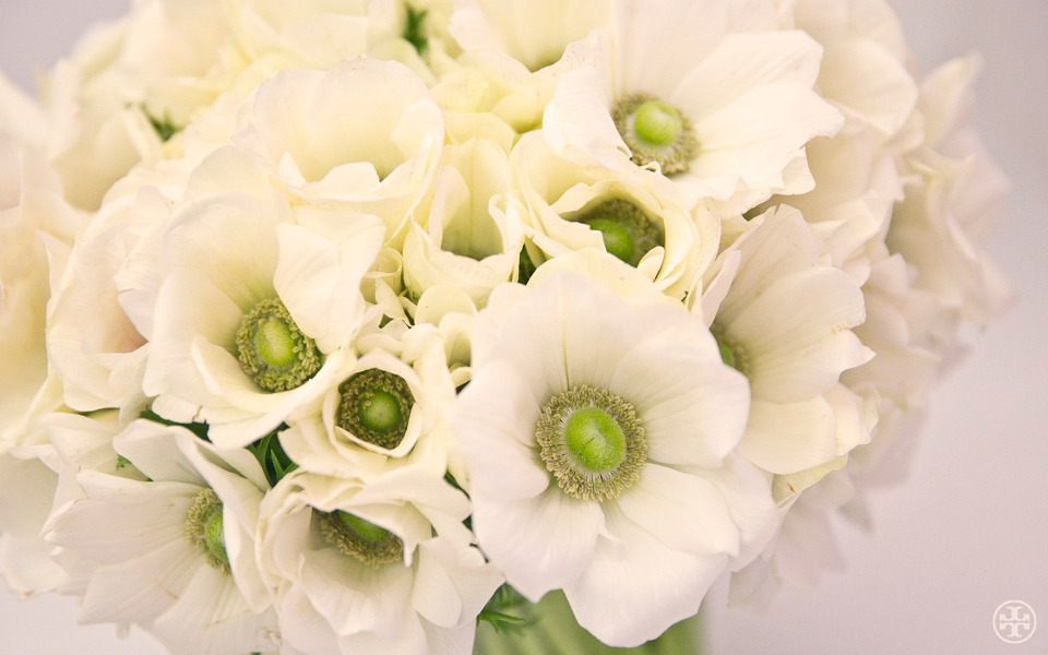 W is for White Anemones Beautifully petaled flowers, like these, are a quick and easy way to fresh up a room.  Photo by Noa Griffel Read more…