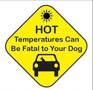 Reminder courtesy of the 99th Avenue and Lower Buckeye Animal Clinic. Temperatures are climbing. As we enter the triple digits, we would like to remind you that on a 100-degree day, the temperature in your car can reach 140 degrees in just 15 minutes. Please keep your pets safe at home with plenty of cool water and don't forget to stay hydrated yourself :)
