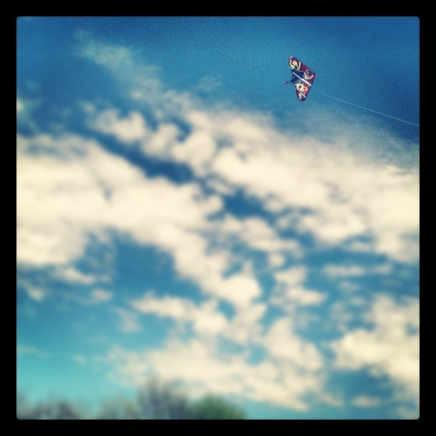 Nice day to fly a #kite! #spring