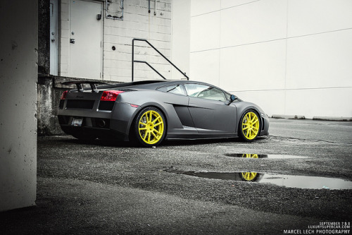 petrolsexual:  Gallardo x PUR wheels by Marcel Lech on Flickr.