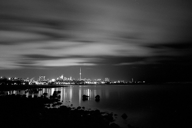 Toronto at night, complete with sleeping ducks.