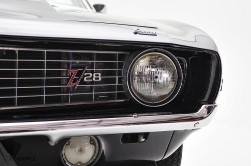 spdcrzy:  crash—test:  1969 Chevrolet Camaro (by CatsExotics)
