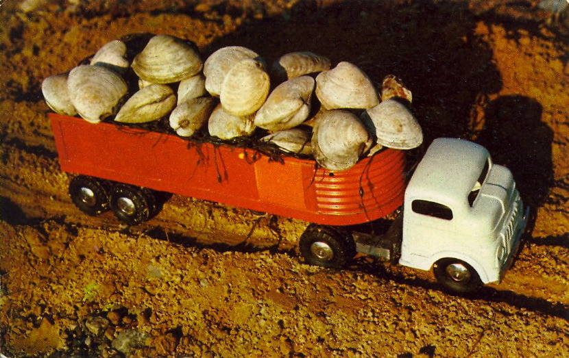 QUAHOG CARGO  A Carload of Cape Cod Fruit