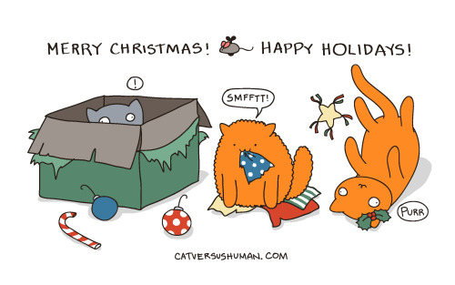catversushuman:  Merry Christmas! Smmffftt!   Merry Christmas or Happy holidays! Happy whatever you celebrate or don't celebrate :)
