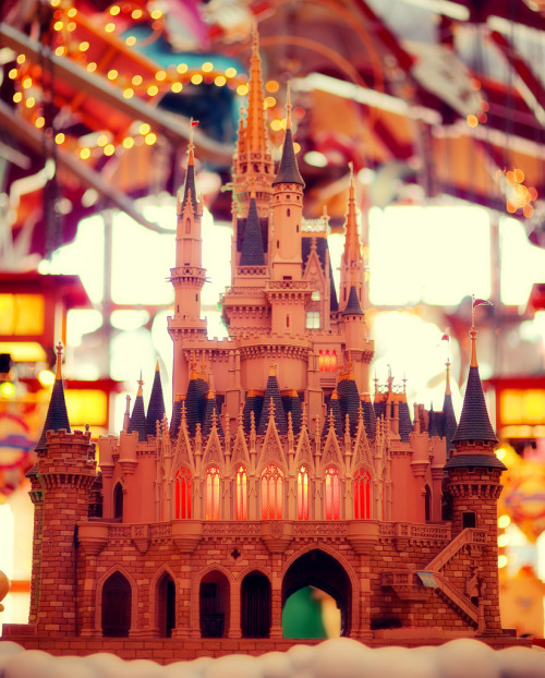 part-of-our-disney-world:  Castle on a Cloud by Express Monorail on Flickr.