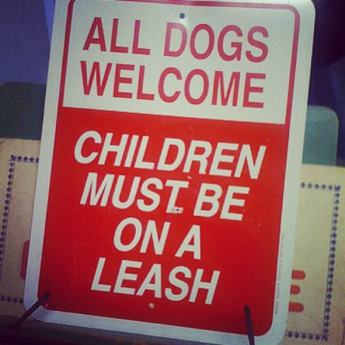 "Every time I see a kid on a leash I feel the urge to hold a treat just outside his grasp & say ""who's a good boy?"" Am I the only one?"