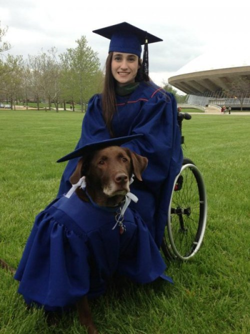 collegehumor:  Awesome Graduate and Her Equally Awesome Graduate Service Dog Graduation presents include money and treats.
