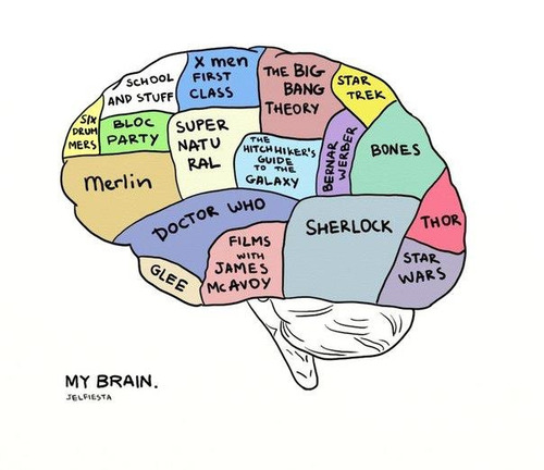 My Brain. That's about right.