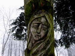 winter sculpture tree landscape trees psychedelic nature Magic earth mother wild witchcraft spirit Goddess Spiritual tale nordic Paganism wiccan pagan wicca north slavic belarus witching wistful slavic folklore