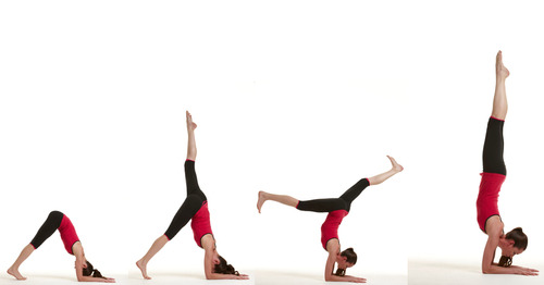 crazysexyfierce:  mayurasana:  [img src: Tara Stiles Yoga] How to - forearm stand: Bring your mat up against a wall, then locate your hands two or three feet away from the wall. Make sure arms are parallel to each other and facing the wall, not pointing inwards or outwards. On your forearms, walk your feet up into dolphin pose, or a downward facing dog variation, until you feel the backs of your thighs lifting up. Slowly, balance on one leg and you pull the other toward the sky.  Use the foot planted on the ground to gently kick up as your extended leg also begins to propel forward.  Bring your legs together in the air, trying to balance without the wall. It's perfectly alright if you can't - the wall is there to catch you before you fall. Keep your tailbone tucked in and ribs pulled inward as you balance, staying aware of your breath and making sure to not put extra pressure on the lower back. To come out, let the legs fall back toward the mat as you come back into dolphin pose. Release into child's pose and rest for a few breaths.  My goal. I WILL do this before the year is out.   I wish i can do this.. :'(