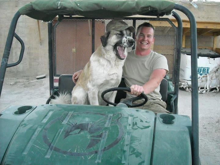 Max and his Daddy Soldier in Afghanistan. Max is now living the life a dog deserves with his human in Connecticut thanks to Puppy Rescue Mission.