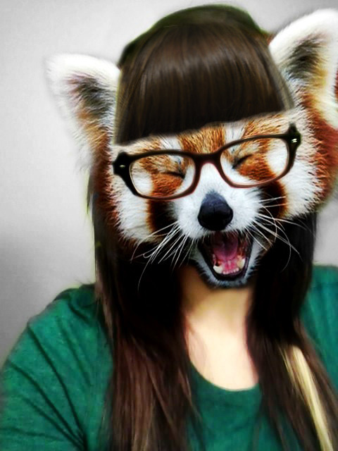 I just really like Red Pandas.
