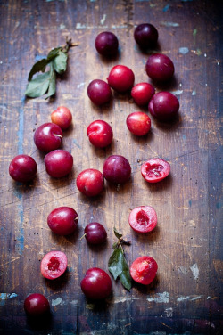 grayskymorning:  Tiny Plums by tartelette on Flickr.