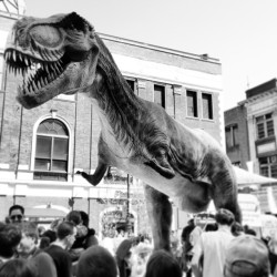 T.rex on Broad (at PIFA Festival)