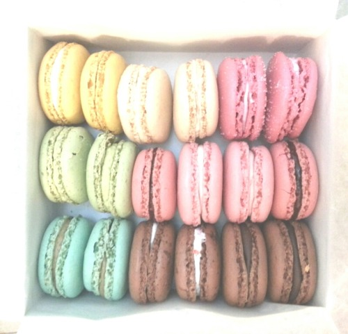 elactrixity:  Dad bought some Laduree macarons home woohoo
