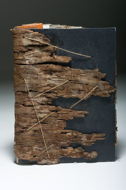 Dry Bark Book by Stephanie Frederick