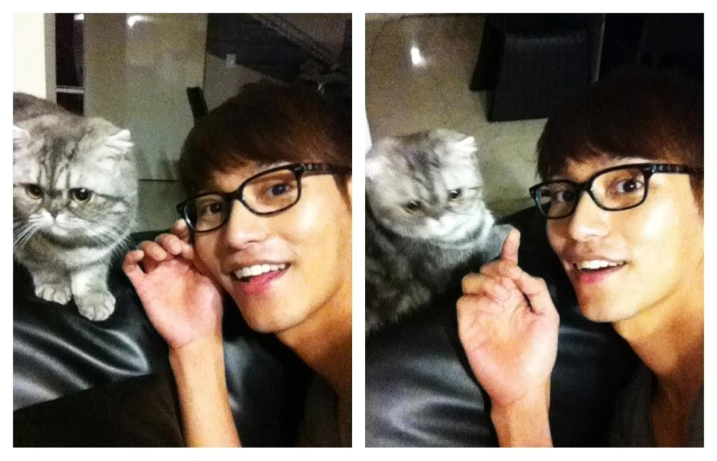 uriyoo:  Secretary Moon with Park Shi Hoo's kitty Cr: DCinside PSH  how did this happen