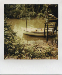 filiperaimundo:  Polaroid 635 CL - PX 680 Film. Portugal.