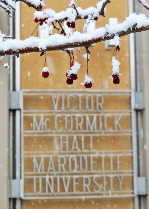 Snow falls at McCormick Hall, Marquette University.