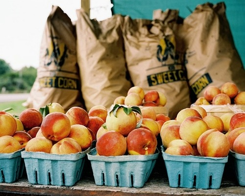 rainydaysandblankets:  seriously, though - is it peach season yet…?