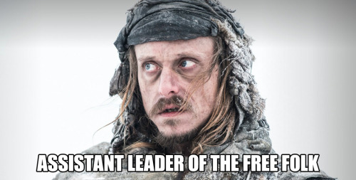 "maritsa-met:  tumblrofthrones:  Assistant to the Leader of the Free Folk  Orell Invetigates  ""Was it one of you two?"" ""Yes. Christ, you're good."""