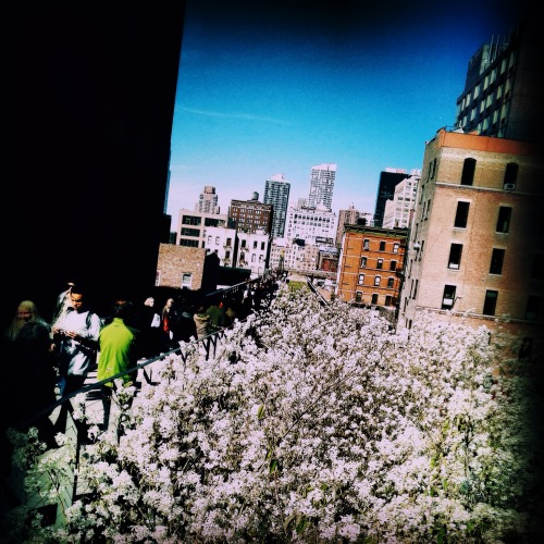 The Highline, West Chelsea